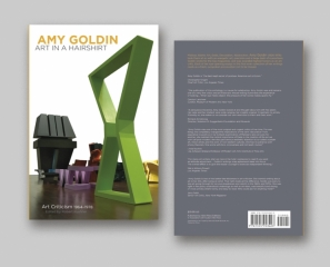 Amy Goldin; Art in a Hairshirt